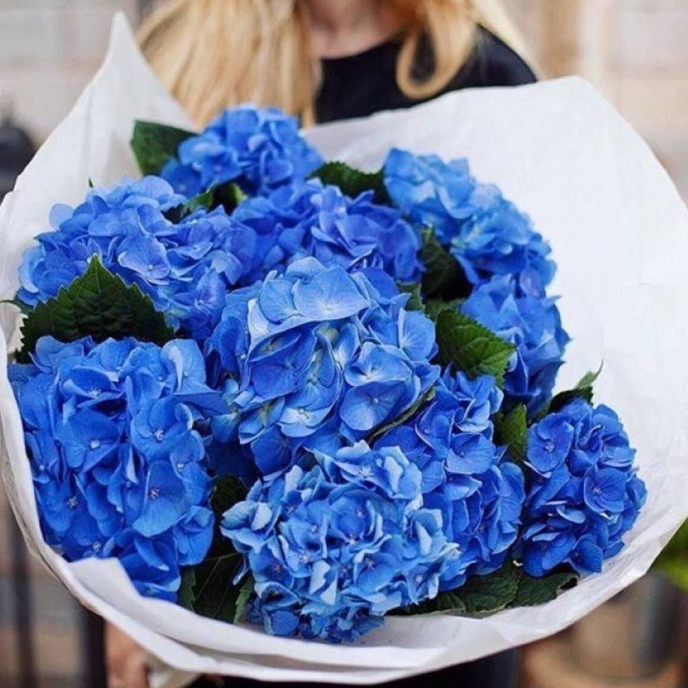Синяя гортензия букет мужской