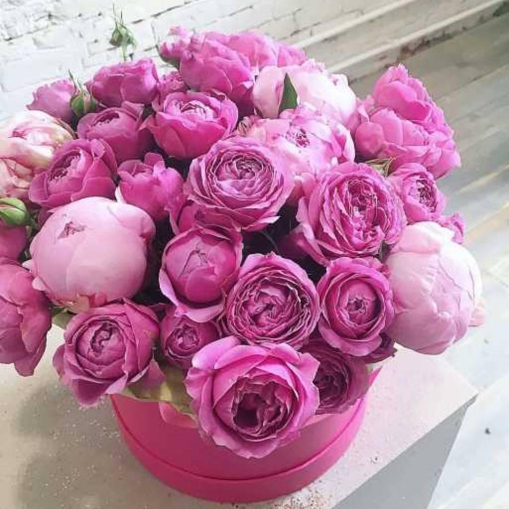 Картинки с днем рождения пионовидные розы в коробках, открытки