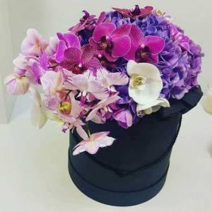 Орхидеи и гортензия в коробке R795