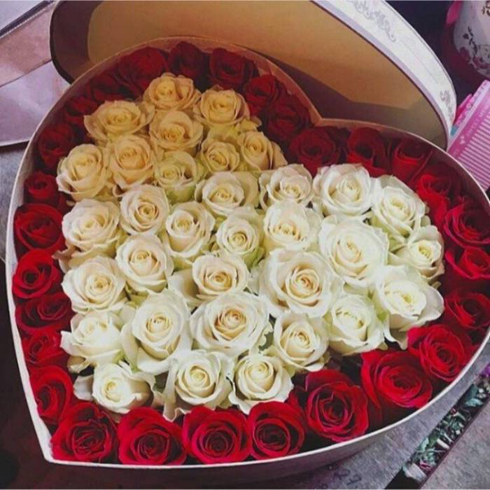 51 роза в коробке сердце R844