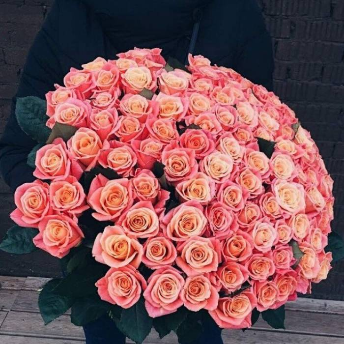 Букет 101 персиковая роза с лентами R023
