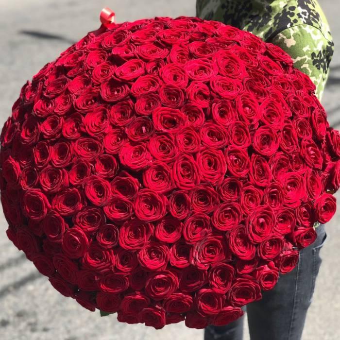 Букет 201 красная роза с упаковкой R059