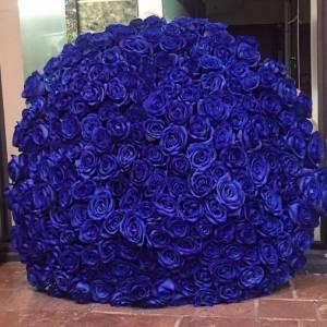 201 синяя роза в букете с упаковкой R925