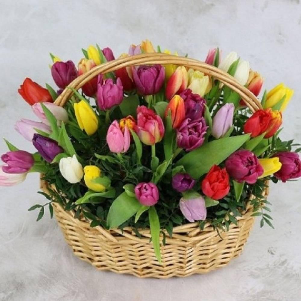 Открытка корзина с тюльпанами, сентября днем знаний