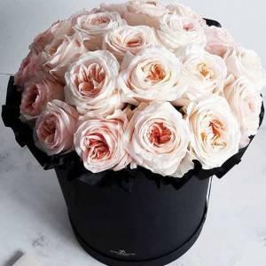25 крупных пионовидных роз в коробке R002