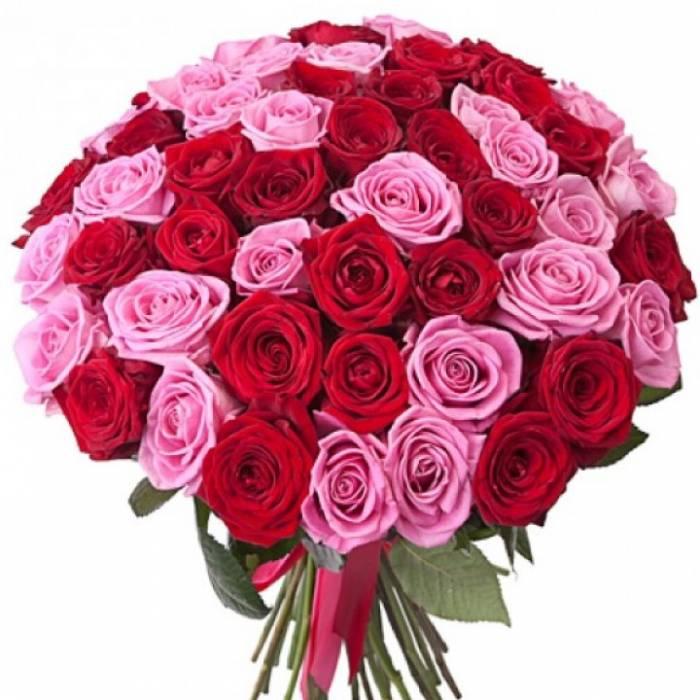 51 роза R007