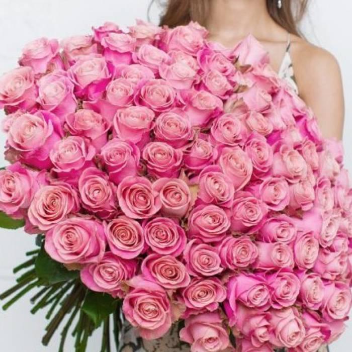 101 роза R006