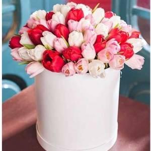 59 тюльпанов ассорти в коробке R192