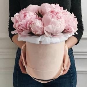 Нежная коробка 15 розовых пионов R453