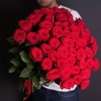 Красные розы R023