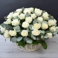 Корзина 39 крупных белых роз R015