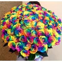 Большой букет 101 радужная роза R011